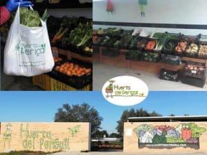 Fruta y verdura ecológica en San Antonio de Benagéber
