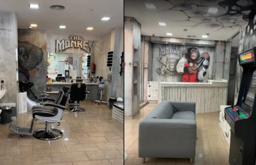 The Monkey Barbershop