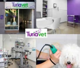 Veterinario Turiavet
